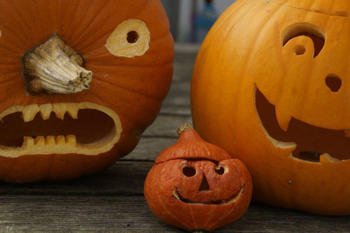 Se acerca halloween la mansi n de las ideas - Calabazas de halloween de miedo ...