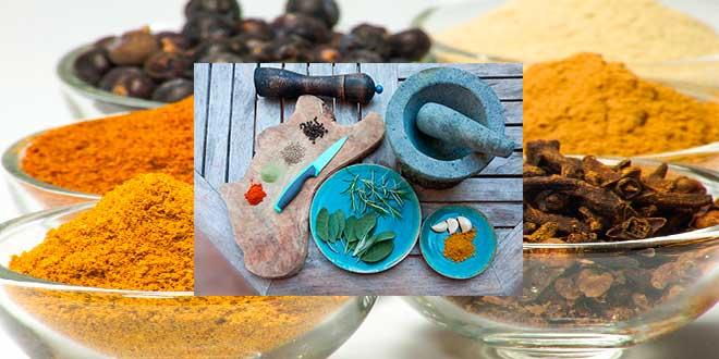 microondas-secar-hierbas-y-tostas-especias