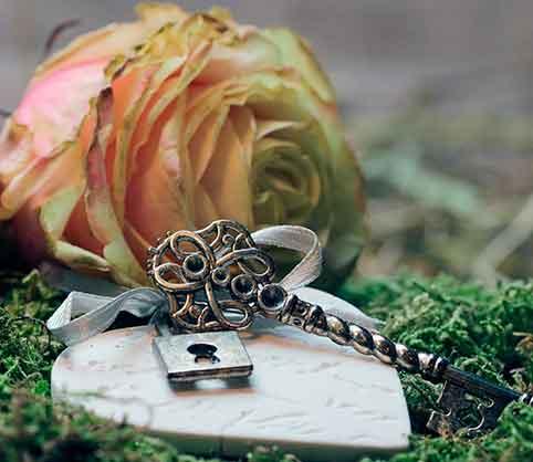Resumen del mes de febrero el mes del amor y mucho más