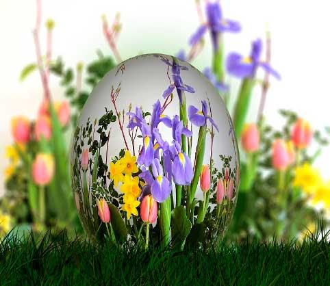 Cómo vaciar huevos para decorar