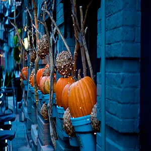 Ideas para decorar y pasar un feliz Halloween