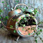 Macetas originales para plantas