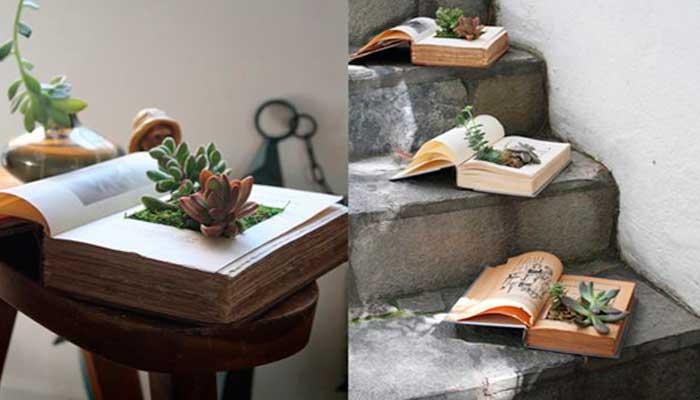 macetas, reciclaje, plantas