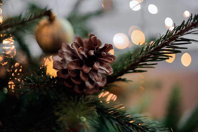 Decoración de árboles de Navidad 2017 - 2018