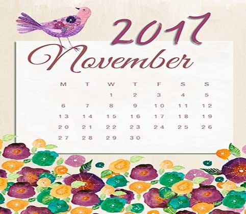 Resumen de los pots de Noviembre 2017
