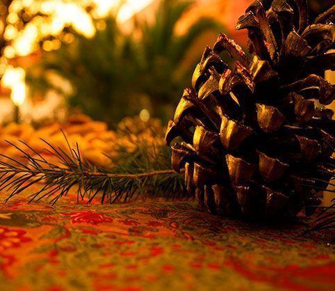 Navidad, destacada,-pino,-piña