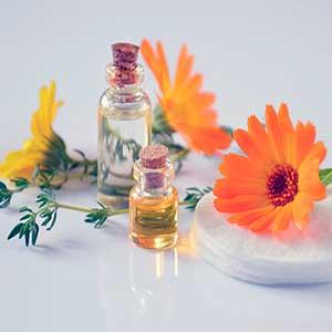 Cómo hacer aceite de caléndula en casa