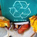 5 maneras de ganar dinero reciclando