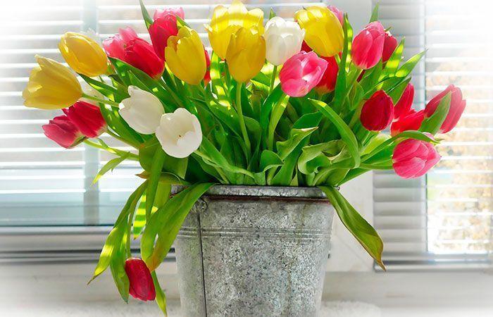 regalos-dia-de-la-madre,-ramo-de-flores,-ramo-de-tulipanes,-ramo-de-tulipanes-en-un-cubo