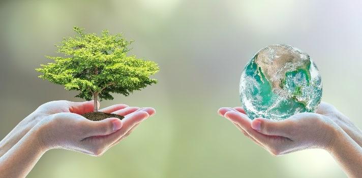 cuidar-al-medio-ambiente