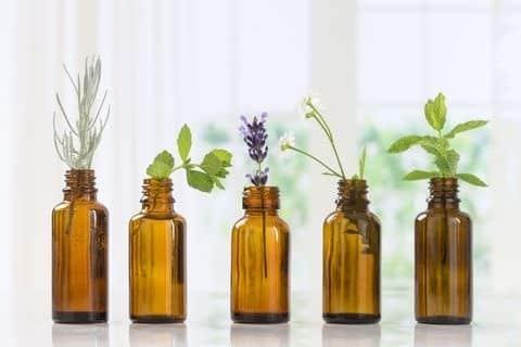 Aceites esenciales para los mejores humidificadores